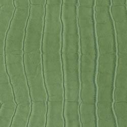 Exclusively You 8-1/2 inch X 11 inch Crocodile Swatch Green - product images