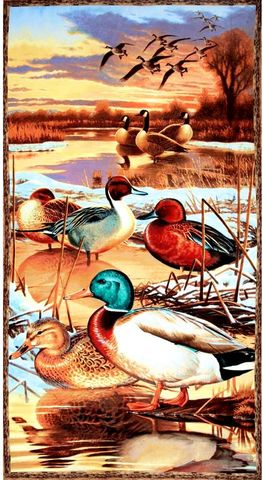 Panel,Plus,Duck,Goose,Nature,Lover,Backing,kit,quilt fabric,cotton material,auntie chris quilt,sewing,crafts,quilting,online fabric,sale fabric