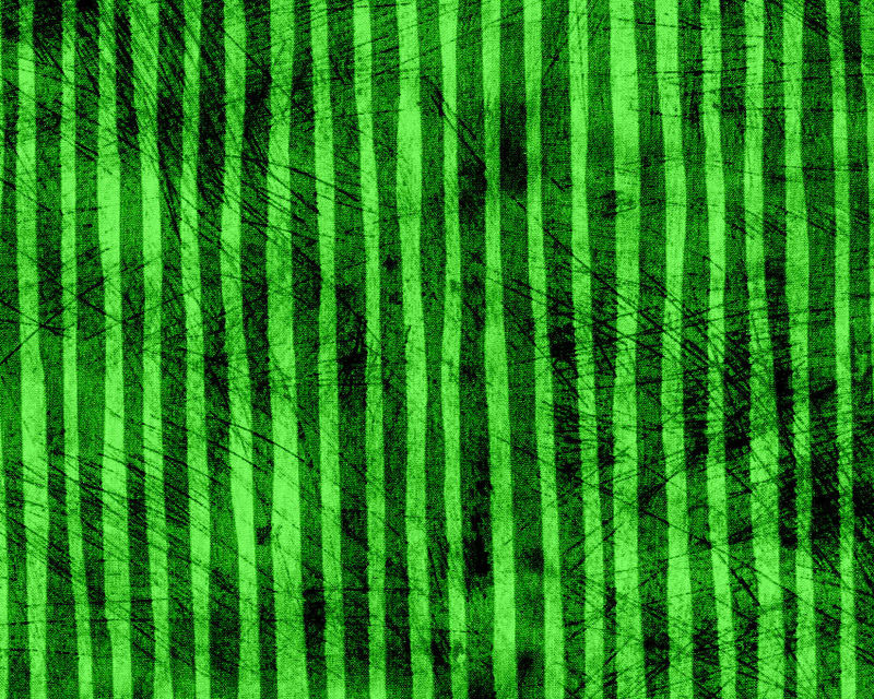 Cotton Quilt Fabric Cool Cats Essentials Green Stripe P&B Textiles  - product images  of