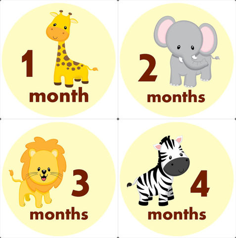 Zoo,Safari,Animal,Monthly,Birthday,Stickers,Zoo Animal stickers, Safari Animals, Lions, Giraffe, Zebra, onesie stickers, photo props