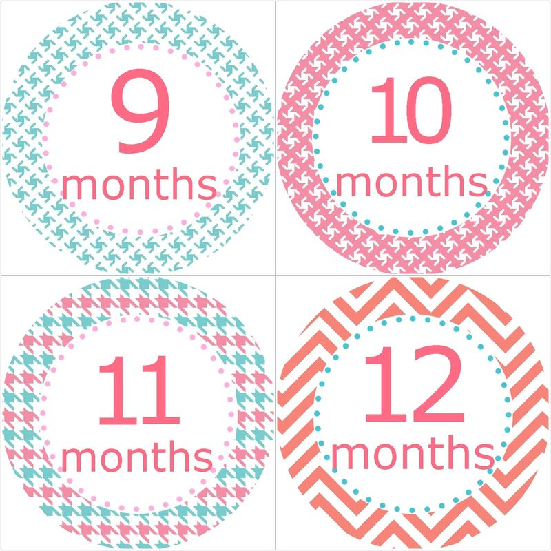 Aqua And Coral Pink Baby Monthly Birthday Stickers