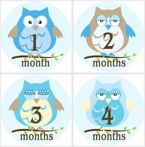 Blue,Owls,Monthly,Birthday,Stickers,,photo,props,Blue Owls, Owl Birthday Stickers, Baby Owl Monthly stickers, newborn gifts, owls, stickers, baby shower gift