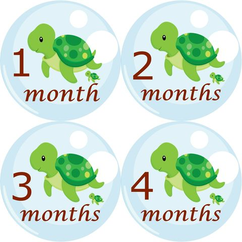 Baby,Turtle,Monthly,Birthday,Stickers,Turtle Birthday Stickers, Turtle Monthly Onesie Stickers