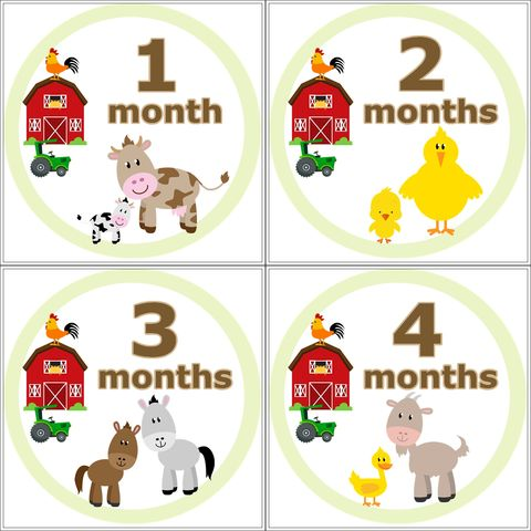 Farm,Animal,Monthly,Birthday,Stickers,Farm Animal Stickers, Farm Animals, Farm Animal Birthday Stickers