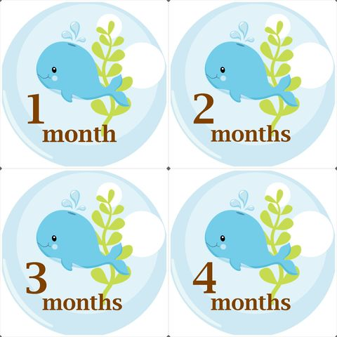 Whale,Baby,Monthly,Birthday,Stickers,for,growth,photo,Whale Monthly Birthday Stickers, Sea stickers, whale, Monthly Onesie Stickers
