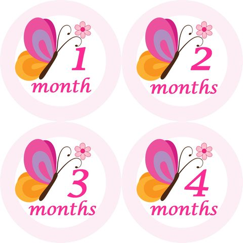 Baby,Girl,Butterfly,Monthly,Birthday,Stickers,Butterfly Stickers, Butterfly, Birthday Stickers, Monthly Stickers, newborn stickers, baby shower gifts