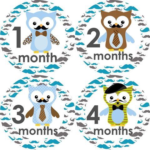 Boys,Mustache,Owls,with,Ties,Monthly,Birthday,Stickers,Mustache Birthday stickers, Owl Mustache stickers, Owl Birthday stickers for Boys, newborn gifts, baby shower gifts, Mustache, Owls, boys