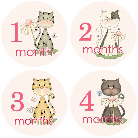 Cats,Monthly,Onesie,Birthday,Stickers,Cat Birthday Stickers, Kittens, flowers, Monthly Birthday Stickers, baby shower gifts, newborn stickers