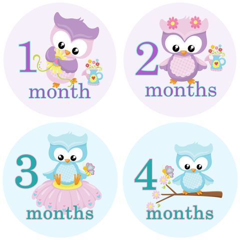 Baby,Girl,Owls,Monthly,Birthday,Stickers,Owl Birthday Stickers, Owl Monthly Stickers, Girl Stickers, Newborn Birthday Stickers, baby shower gifts