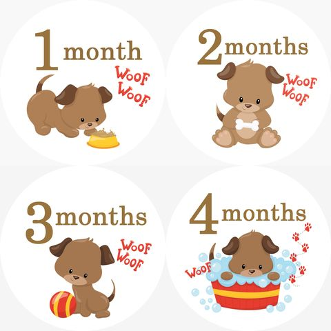 Puppy,Monthly,Birthday,Onesie,Sticker,Puppy Onesie Stickers, Brown Puppy, Monthly Birthday Stickers, Baby stickers, dogs, puppies, puppy dog, baby shower gifts