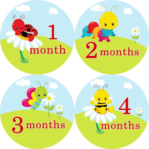 Little,Bugs,Monthly,Baby,Birthday,Stickers,ladybug stickers, catapillar birthday stickers, newborn onesie stickers, butterfly, bees, newborn gift