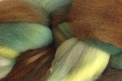 Avocado,Stone,Hand,Dyed,Wool,Roving,Wool Roving Hand Dyed Green Brown