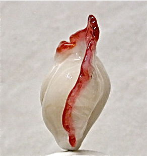 Lampworked Hollow Shell Bead with Scarlet Edge Trim - product images  of