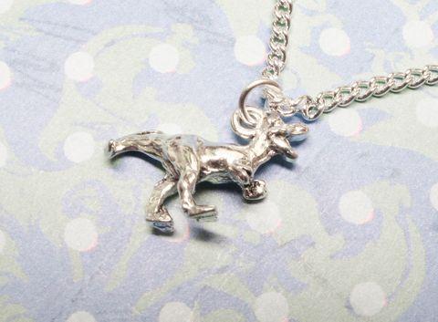 Dinosaur,Necklace,,raptor,velociraptor,t-rex,silver,charm,pendant,dinosaur, necklace, velociraptor, trex, t rex, t.rex, charm, pendant, silver, drop, raptor, dino, retro, kitsch, geek