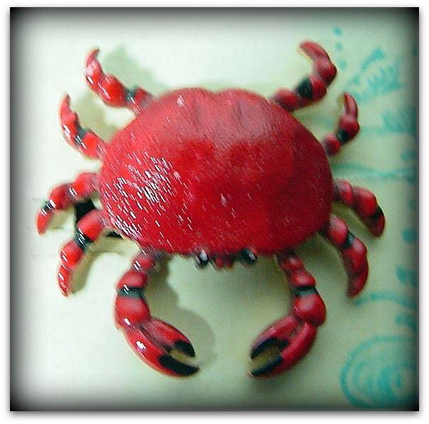 70s Cruise Wear Red Crab Amp Earrings Set Pretty Sweet Vintage