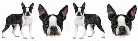 Boston,Terrier,Dog,Breed,Specific,Craft,Designer,Grosgrain,Ribbon,Boston Terrier Dog Breed Specific Craft Designer Grosgrain Ribbon, breed specific dog ribbon, craft dog ribbon, grosgrain ribbon, dog breed grosgrain ribbon, custom grosgrain ribbon, designer grosgrain ribbon, pedigree dog grosgrain ribbon