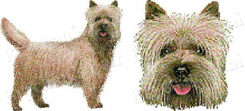 Cairn,Terrier,Dog,Breed,Specific,Craft,Designer,Grosgrain,Ribbon,Cairn Terrier Dog Breed Specific Craft Designer Grosgrain Ribbon, breed specific dog ribbon, craft dog ribbon, grosgrain ribbon, dog breed grosgrain ribbon, custom grosgrain ribbon, designer grosgrain ribbon, pedigree dog grosgrain ribbon