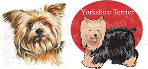 Yorkshire,Terrier,Dog,Breed,Specific,Designs,Craft,Grosgrain,Ribbon,Yorkshire Terrier Dog Breed Specific Designs Craft Designer Grosgrain Ribbon, breed specific dog ribbon, craft dog ribbon, grosgrain ribbon, dog breed grosgrain ribbon, custom grosgrain ribbon, designer grosgrain ribbon, pedigree dog gros