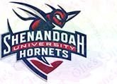 Shenandoah,University,Hornets,Custom,Grosgrain,Ribbon,Shenandoah University Hornets Custom Grosgrain Ribbon Custom Printed Grosgrain Ribbon, mlb grosgrain ribbon, nfl grosgrain ribbon, nba grosgrain ribbon, ncaa grosgrain ribbon, nhl grosgrain ribbon, custom printed grosgrain ribbon, designer grosgrain ribbo