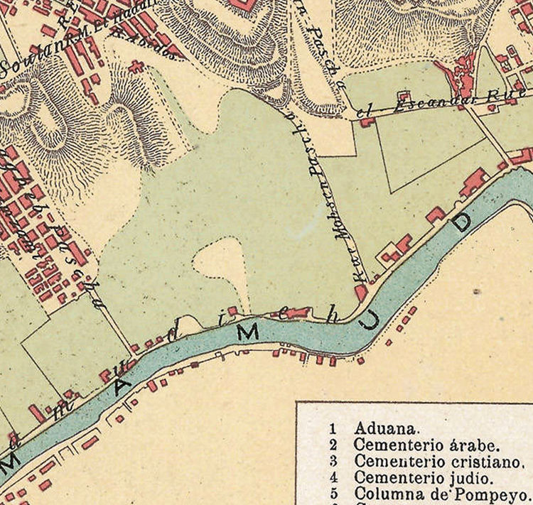 Vintage Map of Alexandria Egypt Old Map 1900
