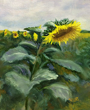 Floral Sunflowers Original Oil Painting on Canvas,