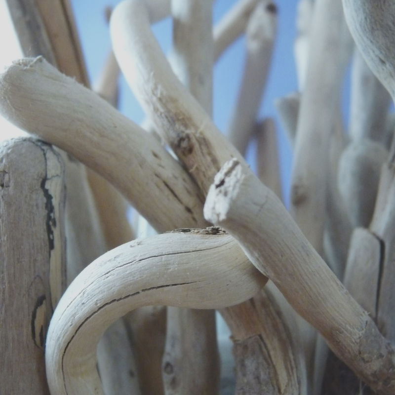 Driftwood Twig Lamp - product images  of