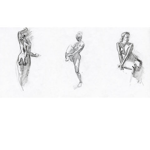 Set,of,Female,Nudes,|,Original,Drawings