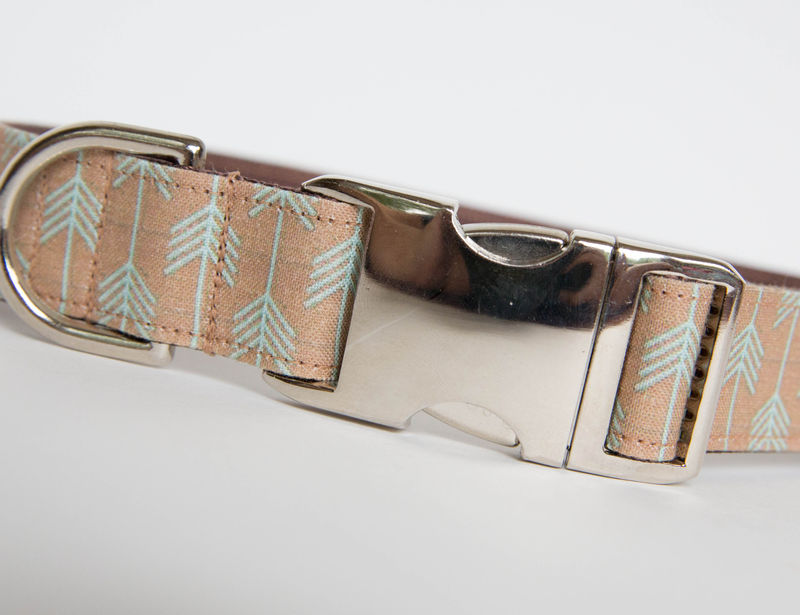 Camp Dog Collar - Tan/Aqua - product images  of