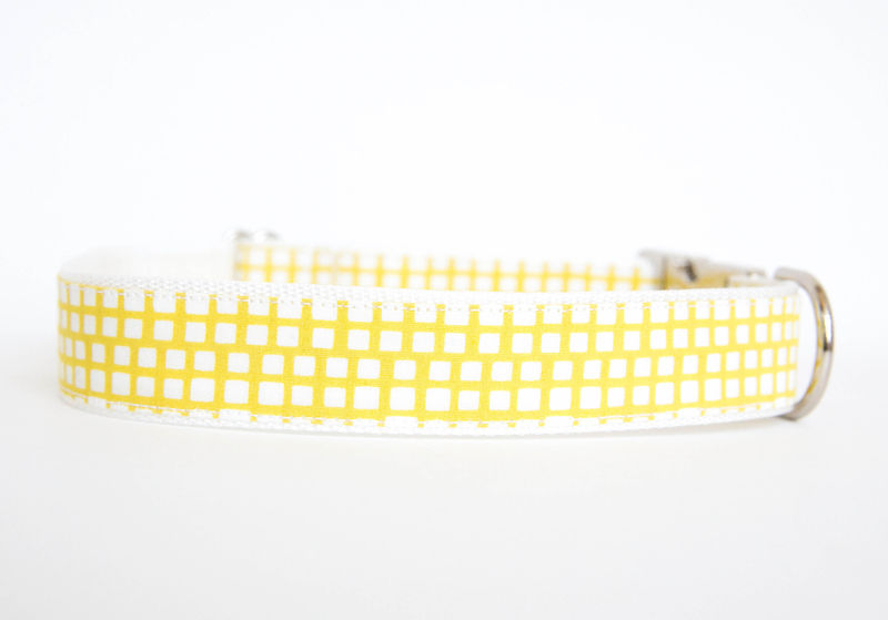 Happy Racquet Dog Collar in Citron - product images  of
