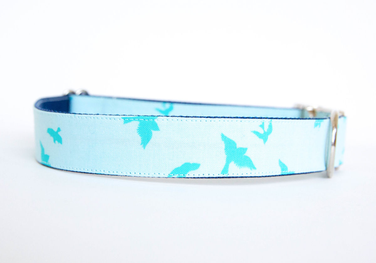 Turquoise Dog Collar Large