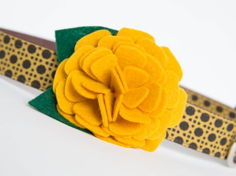 Flower,Dog,Collar,-,Gold,Mum, wedding dog collar, fancy dog collar, unique, dog collar, flower, flower dog collar, dog collar flower, flower for dog collar, felt flower, gold, brown, fall dog collar