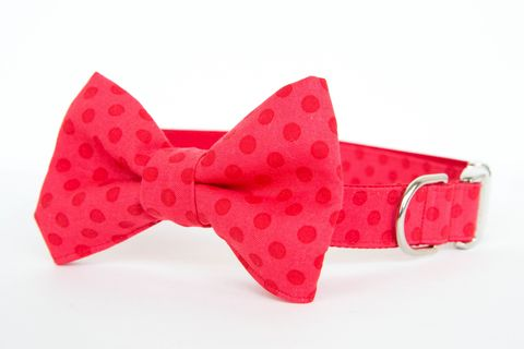Double,Red,Dots,Bowtie,Dog,Collar,dog collar, dog bow tie, dog bowtie, bow tie dog collar, bowtie dog collar, polka dot dog collar, red