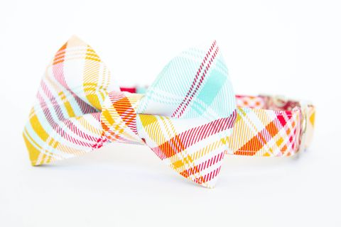 Summer,Plaid,Bow,Tie,Dog,Collar,-,Red,&,Turquoise,dog collar, dog bow tie, dog bowtie, bow tie dog collar, bowtie dog collar, plaid, tartan