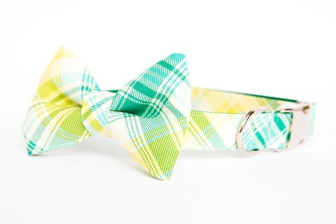 Summer,Plaid,Bow,Tie,Dog,Collar,-,Turquoise,&,Green,dog collar, dog bow tie, dog bowtie, bow tie dog collar, bowtie dog collar, plaid, tartan