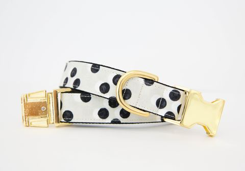 Black,and,White,Polka,Dot,Dog,Collar,gold dog collar, black and white, black and white dog collar, polka dot dog collar, designer dog collar, gold hardware, black and gold