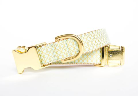 Mint,and,Metallic,Gold,Dog,Collar,gold dog collar, metallic, mint dog collar, mint and gold dog collar, metallic gold