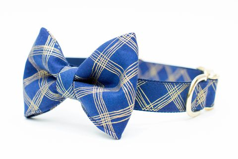 Navy,and,Gold,Plaid,Bow,Tie,Dog,Collar,dog collar, dog bow tie, dog bowtie, bow tie dog collar, bowtie dog collar, christmas dog collar, plaid dog collar, tartan, navy, gold