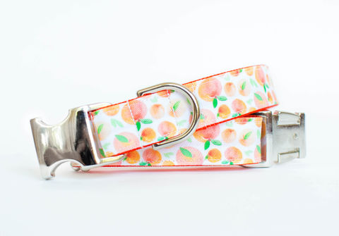 Just,Peachy,Dog,Collar,fruit dog collar, dog collar, southern dog collar, peaches, peach fruit, peaches dog collar, summer dog collar