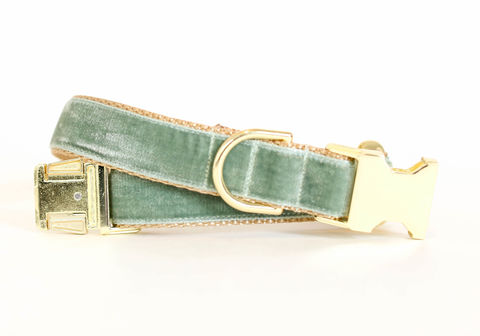 Autumn,Velvet,Dog,Collar,in,Sage,velvet dog collar, velveteen dog collar, classic velvet, classic dog collar, vintage style dog collar, sage velvet, blue green velvet, silver blue velvet