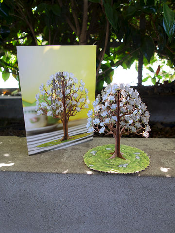 Magnolia,card,with,3D,tree,magnolia, tree, card, pop-up, pop-out, duckling cards, paper, blossom, yellow