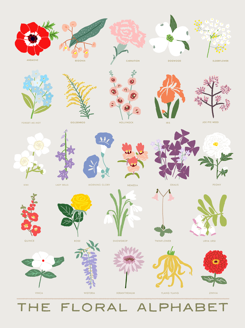 The Floral Alphabet - product image