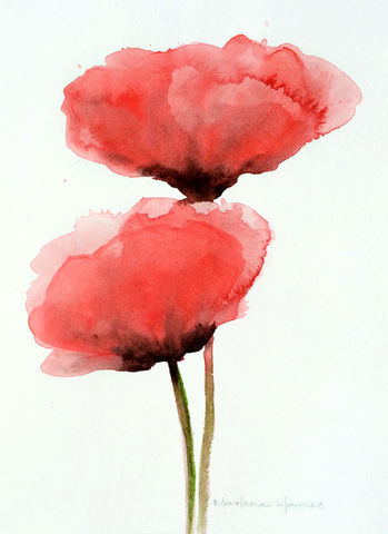 Red,Poppies,(original,watercolor),red poppies, watercolor