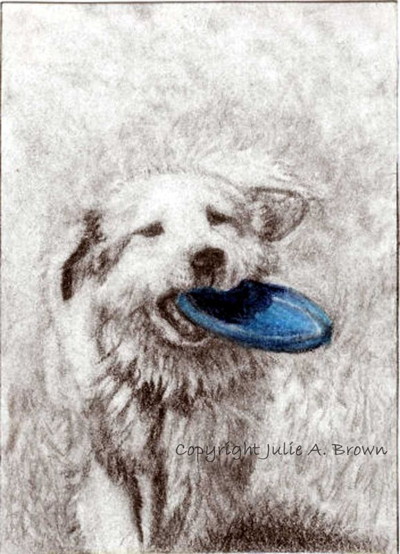 Hey, Wanna Play -Dog ACEO/ATC  Reproduction Print - product images