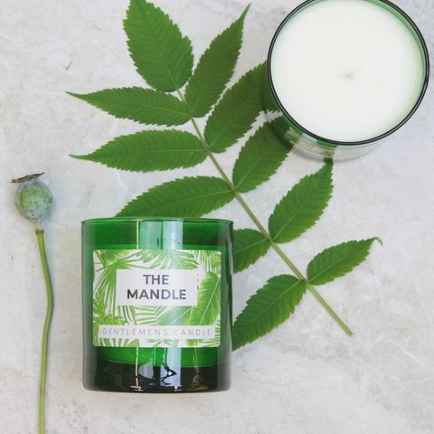 The,Mandle,,A,Candle,for,Men.,mandle, mens candle, green, tropical interior, tropical candle, greenery.