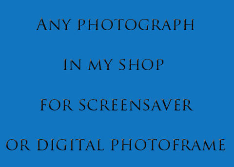 Digital,Photograph,for,Screensaver,or,Picture,Frame,Art,Photography,photography,art,digital,screensaver,digital_photo_frame,picture,scenic,landscape,michigan,digital_files,files,electronic,download