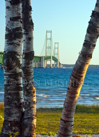Mackinac,Bridge,Michigan,Photograph,Art,Photography,Landscape,scenic,photograph,michigan,bridge,mackinac,water,lakes,Great_Lakes,Mackinac_Bridge,Lake_Michigan,Lake_Huron,landscape,picture,gallery_mount,bevel_mount,metallic_print,dura_coat,finished