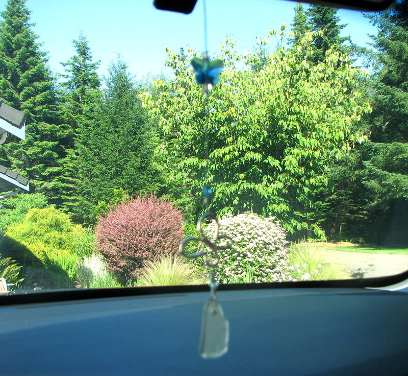 Sea Glass Rear View Mirror Charm, Butterfly Sun Catcher - product images  of