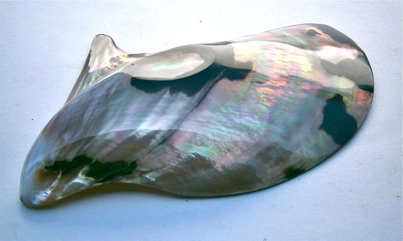 Vintage Abalone Shell Half Rainbow Seashell Soap Dish Decorative Catchall Small Tray Tropical Exotic Island Shellac Nautical Beach Décor  - product images  of