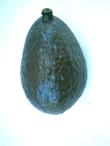 Vintage,Dark,Green,Avocado,Plastic,Hard,Display,Kitchen,Décor,Table,Setting,Center,Piece,One,Wedding,Centerpiece,Realistic,Salad,Decoration,vintage avocado fruit, green avocado plastic fruit, avocado salad, life size avocado decorcation, avocado salad decoration, one avocado fruit, realistic plastic avocado, avocado green kitchen décor, green table setting, green center piece, avocado salad b