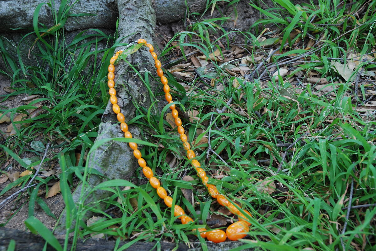 Marbled Egg Yolk Plastic Beaded Necklace - product images  of